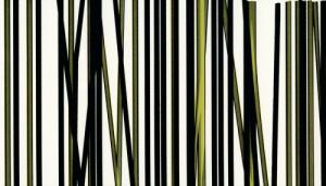 1538E - это название цвета и покрытия для категории Кромки ПВХ REHAU Inspiration photo