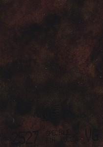 2527 - это название цвета и покрытия для категории Пластики ARPA Фантазийные
