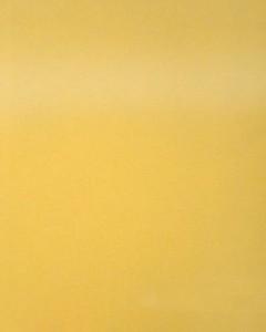 DT0010HG - это название цвета и покрытия для категории Пластики Melatone Special