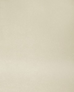 4002HG - это название цвета и покрытия для категории Пластики Melatone Stock program