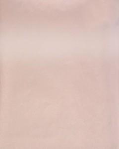 4007HG - это название цвета и покрытия для категории Пластики Melatone Stock program